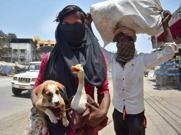 migrant carrying dog