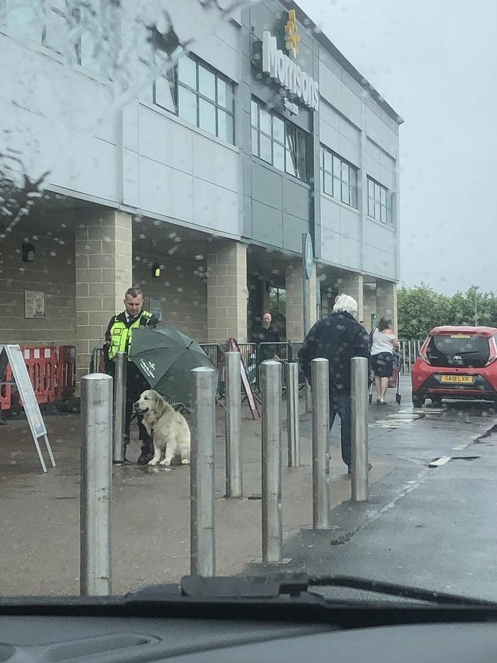 security guard holding umbrella for dog