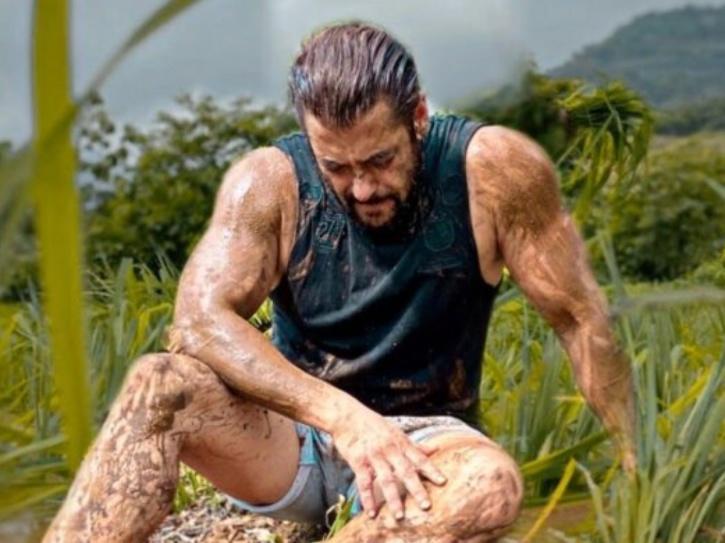 Salman Khan farming picture.