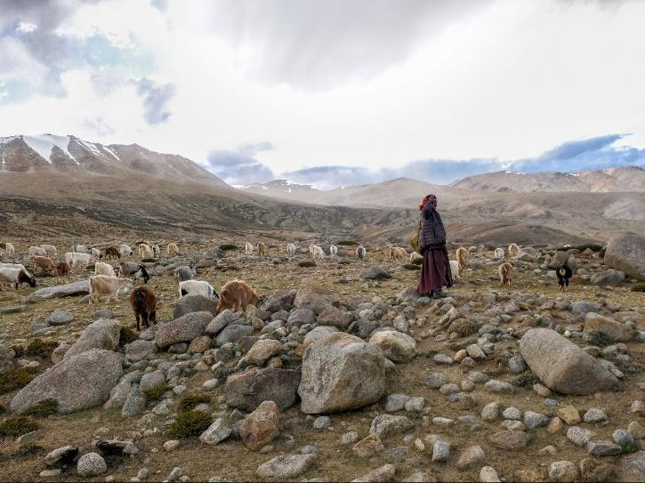Previously, Indian tourists were only allowed to visit areas beyond Panamik till Warshi including Yarma Gompa/Yarma Gonbo Monastery in Leh's Nubra Valley.