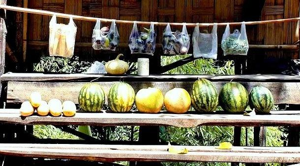 Mizoram Shops