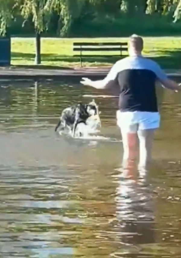 man and dog in pond