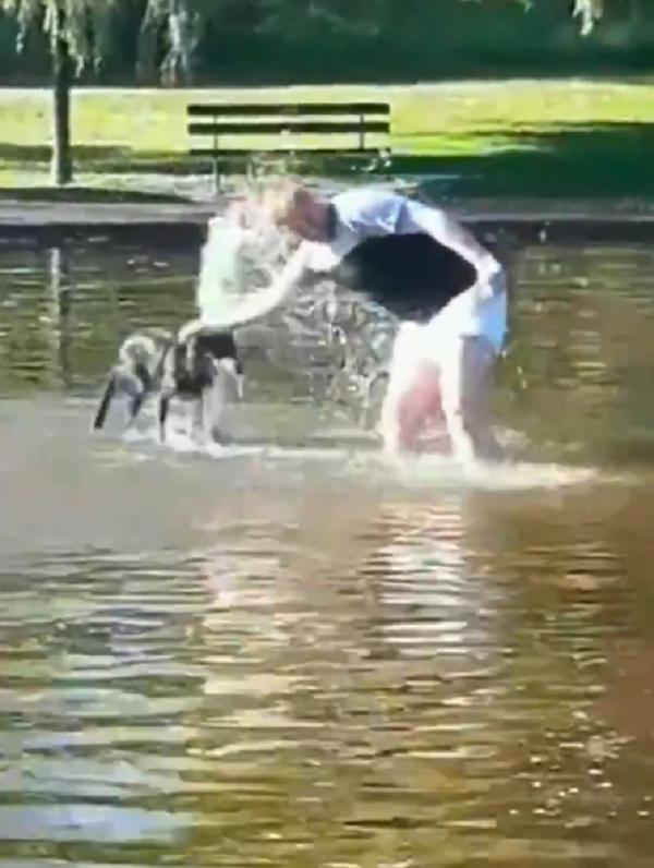 man taking dog