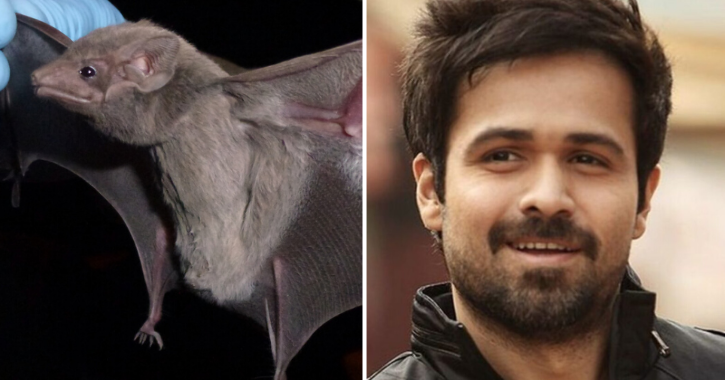 Are Bats To Be Blamed? Emraan Hashmi Thinks Coronavirus Is Spreading Because Someone Ate The Animal