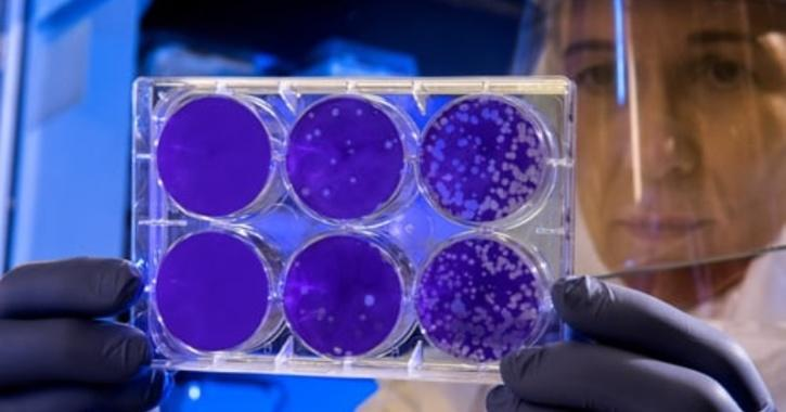 New 'Hidden' Gene Found In Covid-19 Virus Can Help Us Fight The Pandemic Better