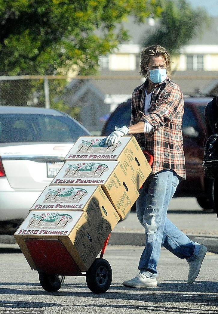 Brad Pitt distributing groceries / Daily Mail