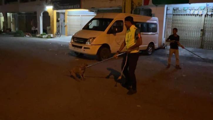 Dog catchers
