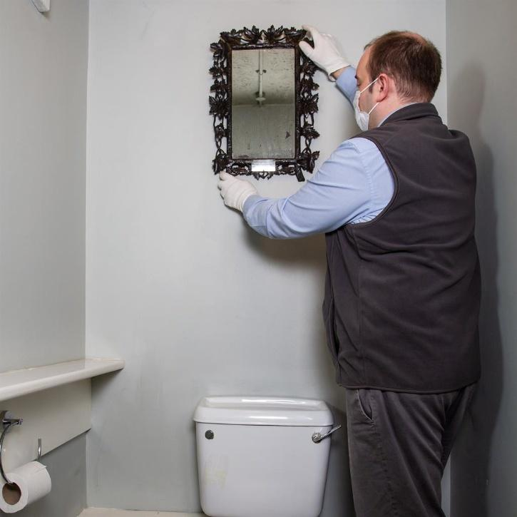 Mirror owned by Marie Antoinette the crown jewel of family loo