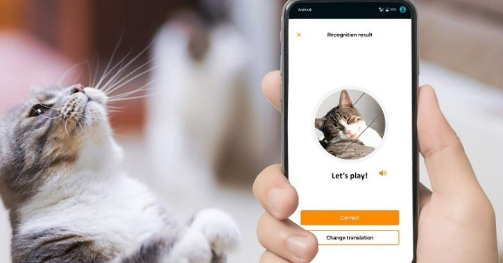 MeowTalk: New Translation App By Former Alexa Engineer Lets You Talk To Your Pet Cat