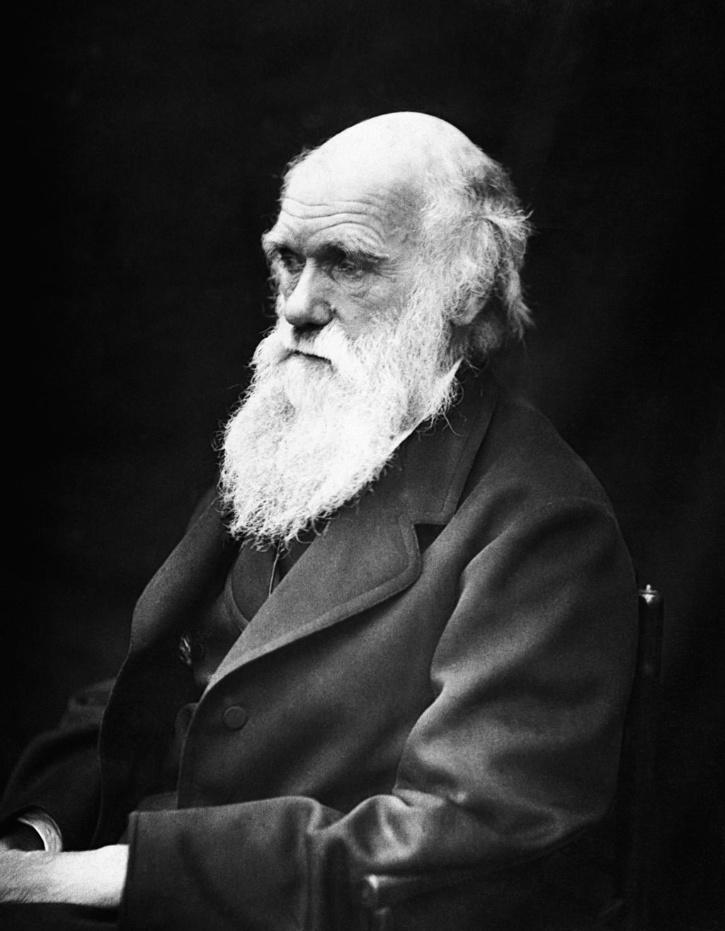 Darwin's notebooks likely missing