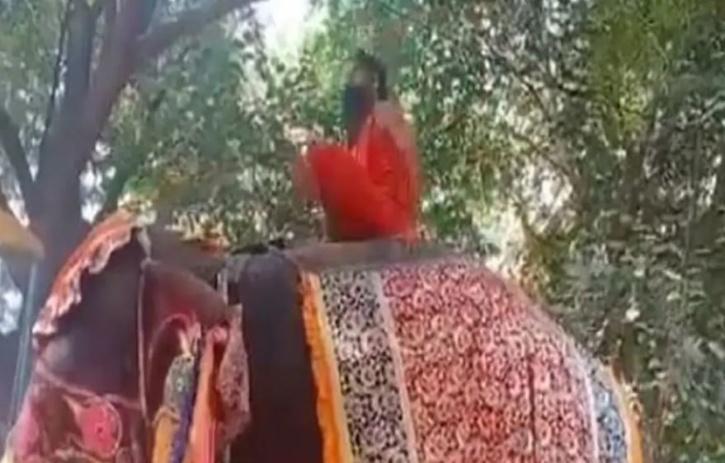 Baba Ramdev Elephant Yoga Video