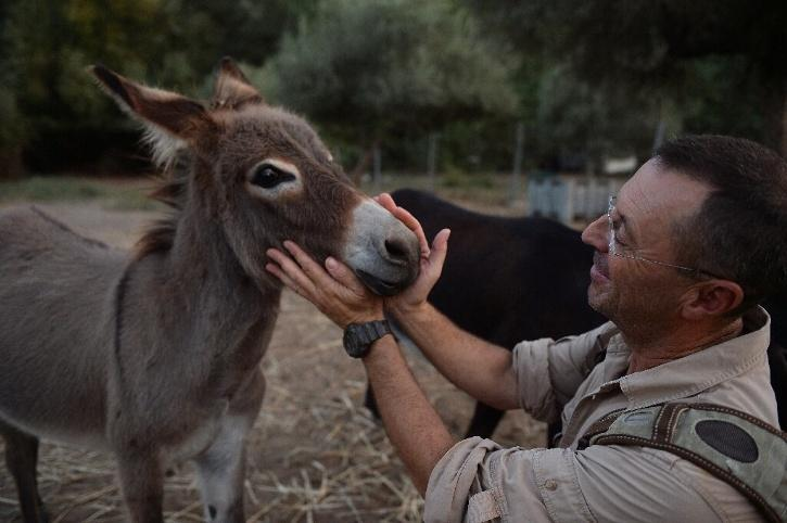 The Doctor Donkey project started in late June as a way of offering respite to those battling a virus