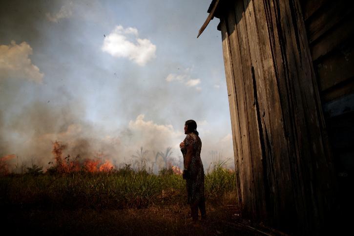 Amazon rainforest dying