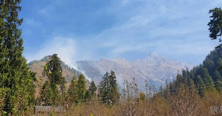 himachal pradesh forest fires