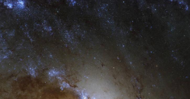 Sternbildende Bereiche in NGC 1365 sind an den Außenkanten des Bildes zu sehen.
