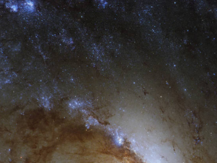 Star-forming regions within NGC 1365 can be seen at the outer edges of the image.