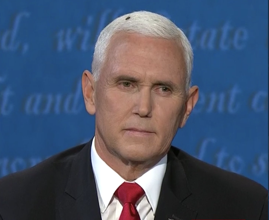 Fly on Pence