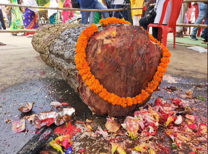 log of sal prayed before chariot is beng built
