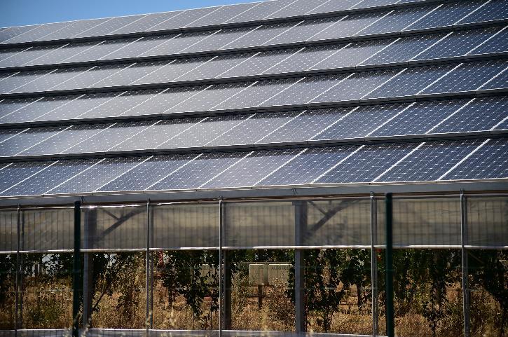 Solar plant India offers 100 million dollar to sri lanka