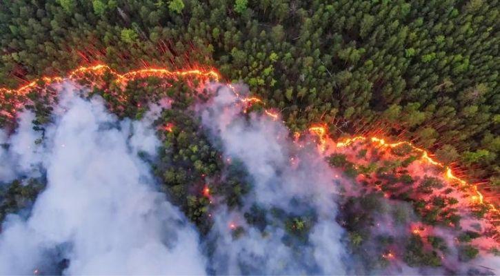 siberia wildfire