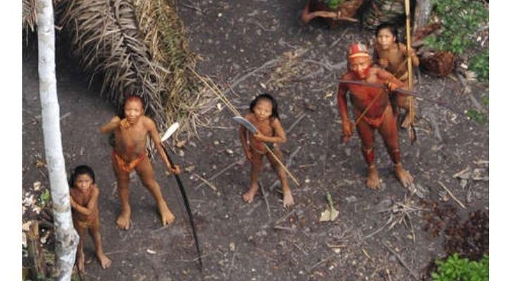 uncontacted flecheiros tribe covid-19