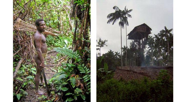 uncontacted korowai tribe covid-19
