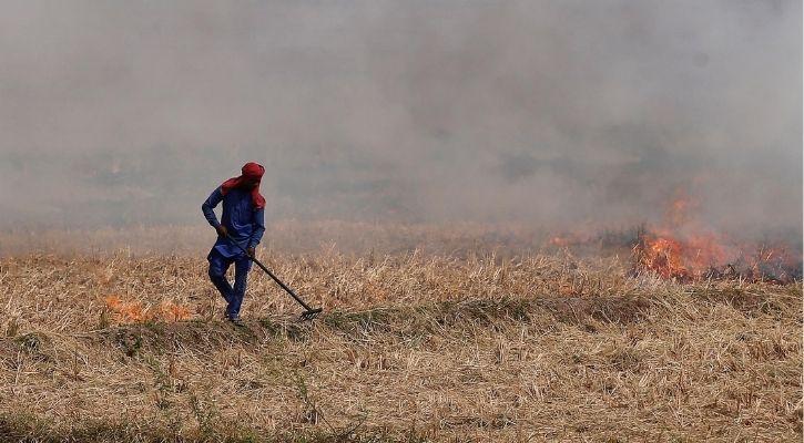 north india stubble burning
