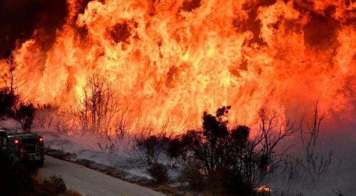california wildfire wine