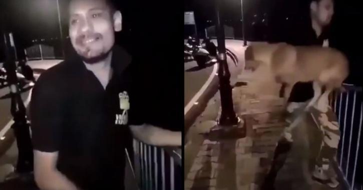 Bhopal man throws stray dog into lake