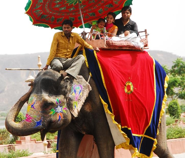 Rajasthan, Hathigaon, Rajasthan Hathigaon, Rajasthan Hathigaon Elephants, Rajasthan Elephant Deaths, Amer Fort