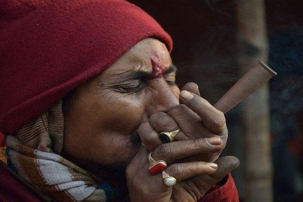Marijuana offered as prasad at temples