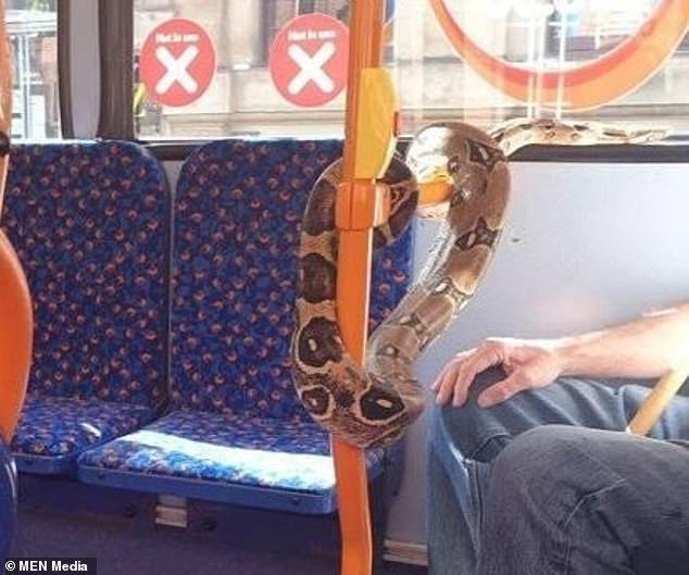 Shocked passengers stared in astonishment as the man removed the snake