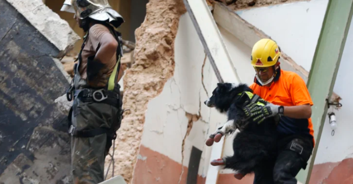 A Chilean rescuer, right, holds a sniffer dog as they search in the rubble of a collapsed building