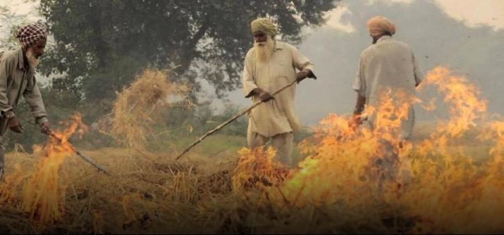 Farmer burning stuble