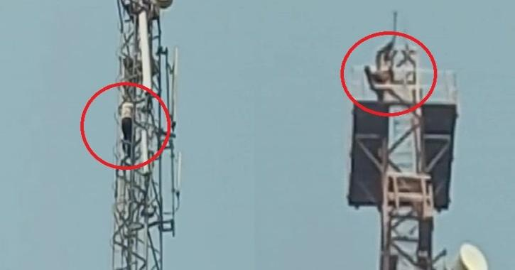 Man climbs mobile tower after quarrel with wife, persuaded to come down