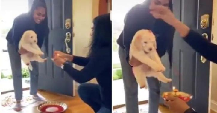 Desi family welcome pup
