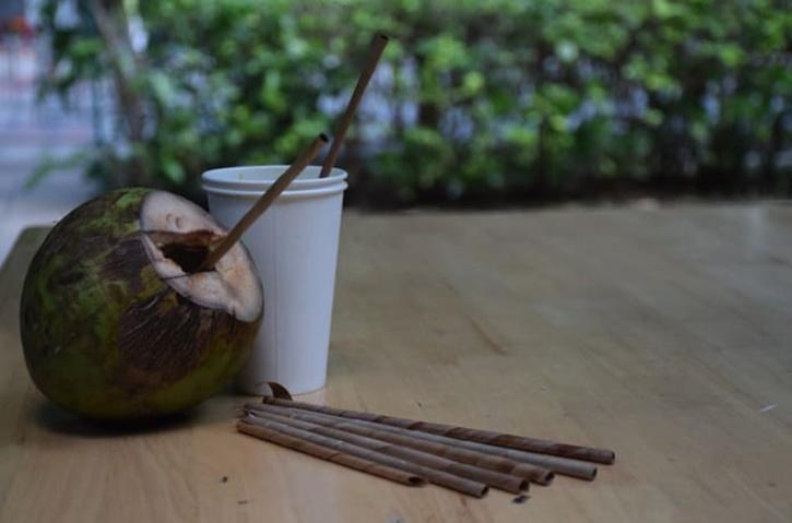 Plastic Straw, Plastic Straw Pollution, Plastic Straw Ocean, Plastic Straw Alternative, Coconut Leaf Straw, Coconut Leaf Straw India, Sunbird Straw