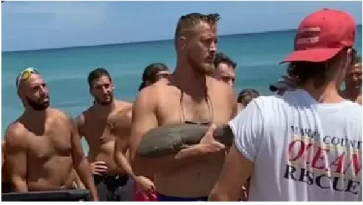 Shark Biting man