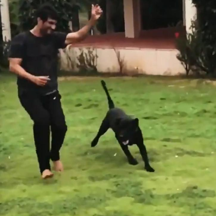 Sushant Singh Rajput playing with his dog / Instagram