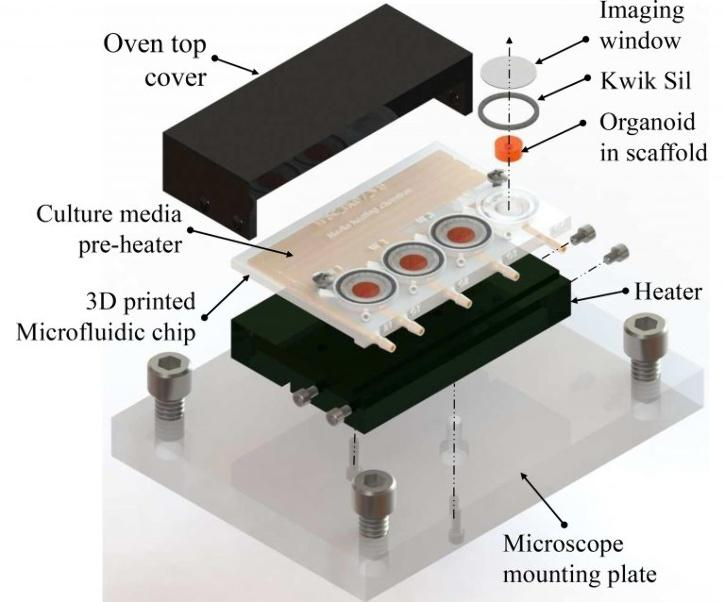 A 3D-printed microfluidic bioreactor for organ-on-chip cell culture.