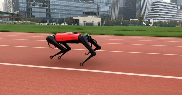 Enter AlphaDog, a robotic hound which uses sensors and Artificial Intelligence (AI) technology to 'hear' and 'see' its environment — and can even be taken for walks.
