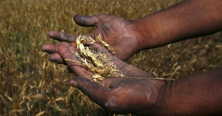 climate change agriculture productivity