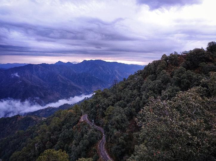 biodiversity nature mountains