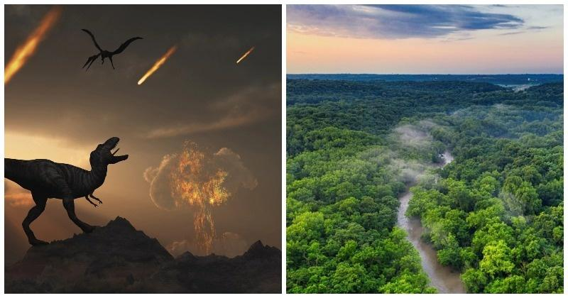 Asteroid That Wiped Out Dinosaurs May Have Given Birth To The Iconic Amazon Rainforest - India Times