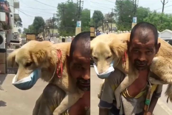 man puts his only mask on his dog