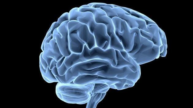 Human brain hunger signal