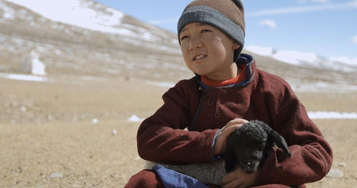 Ladakh now has a cinema call that can cater to the needs of all cinema lovers.