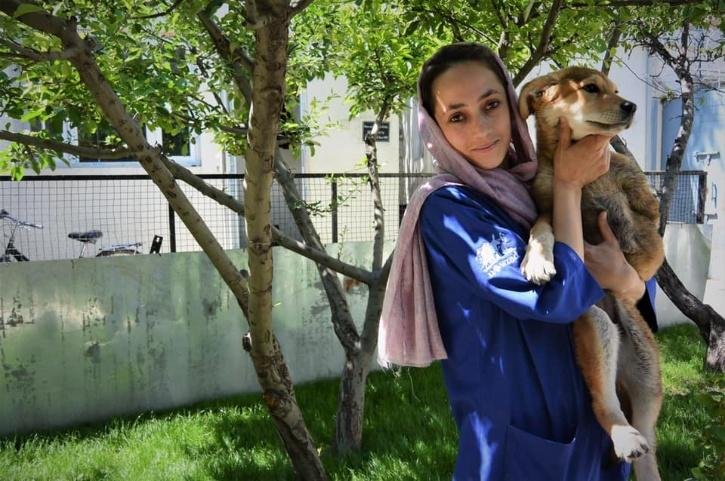Nowzad Charity