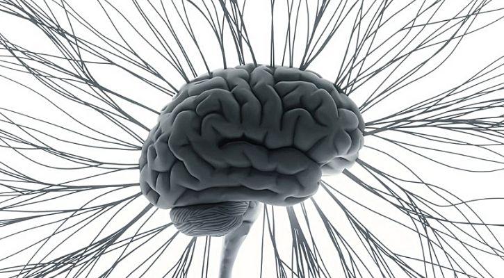 music brain activity