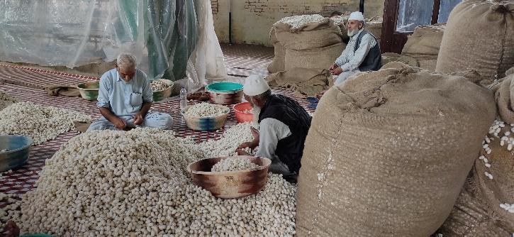 Silk industry in vally
